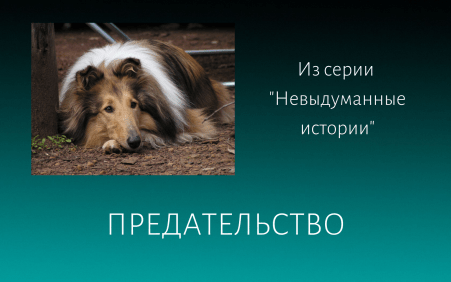 Предательство Елена Дымченко